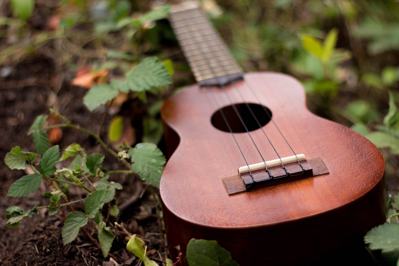 guitare WiziShop